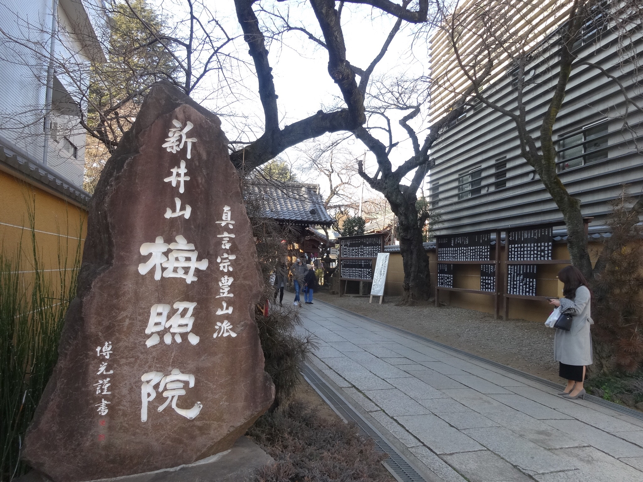 11月23日新井薬師梅照院で出張販売!